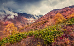 Foggy autumn morning in the Caucasus mountain. Royalty Free Stock Image