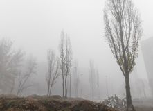 Foggy autumn morning in the city royalty free stock photography