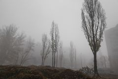 Foggy autumn morning in the city royalty free stock image