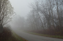 Foggy autumn morning rural road view Stock Photography