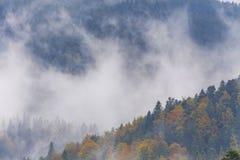 Foggy Autumn in mountauns Stock Photo