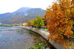 Foggy autumn riverside view Royalty Free Stock Images
