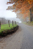 Foggy Autumn Road Royalty Free Stock Images