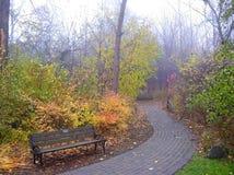 Foggy Autumn Scene Stock Photography
