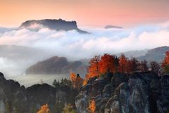 Foggy autumn or summer landscape. Misty foggy morning with sunrise in a valley of Bohemian Switzerland park. Detail of forest. Foggy autumn or summer landscape stock photos