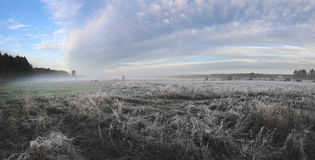 Sunrise on field. Frozen grass on field Royalty Free Stock Images