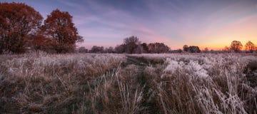 Colorful sunrise. Autumn sunrise with frost Royalty Free Stock Image