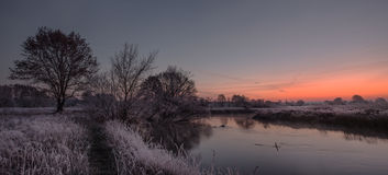 Cold morning. Sunrise with frozen grass Royalty Free Stock Images