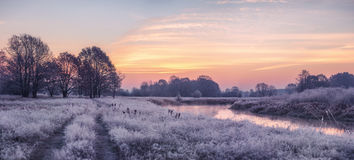 Autumn sunrise. Morning with frozen grass Stock Images