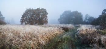 Foggy morning. Foggy autumn sunrise Royalty Free Stock Photos