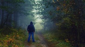 Foggy autumn walk. A nice place to spend some time at any time of the year - including autumn, even in when it`s foggy. I wasn`t sure about this small walk of Royalty Free Stock Photography