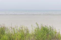 Foggy beach Royalty Free Stock Photo