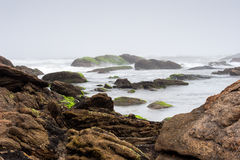 Foggy beach with rocks and mist Stock Photo