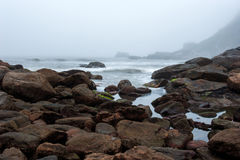 Foggy beach with rocks and mist at nightfall Stock Photos