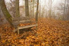 Foggy Bench. Wooden bench in foggy woods stock images