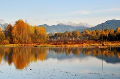 Foggy Burnaby Lake Royalty Free Stock Photography
