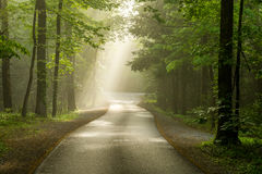 Foggy Cades Cove roadway. Smoky Mountain National Park Tennessee Stock Photo