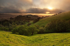 Foggy California Meadow Sunset Royalty Free Stock Photo