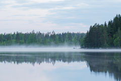 Foggy calm lake and forest at summer night Stock Image