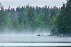 Foggy calm lake and forest at summer night Royalty Free Stock Photography