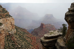 Foggy Canyon Stock Image