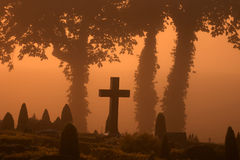 Foggy cemetary. In a cemetary in denmark an automn day in the the early morning fog with a warm orange sun stock photo