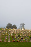 Foggy Cemetery Stock Images