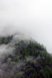 Foggy clouds rising from alpine mountain forest. Foggy clouds rising from dark alpine mountain forest stock photos