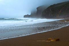 Foggy coast of the East Sea. Royalty Free Stock Images