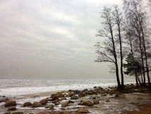 Foggy coast of the frozen winter sea. Finnland bay Stock Photography