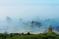 Foggy coast3. Foggy morning near Brookings, Oregon Stock Photos