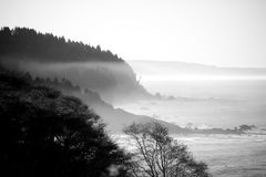 Foggy coastline. Fog coming off the ocean and creeping up the coast Stock Photos