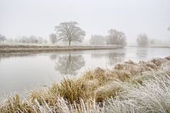 A foggy cold winter morning Royalty Free Stock Photo