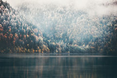 Foggy Coniferous Forest and lake wild landscape Royalty Free Stock Photo
