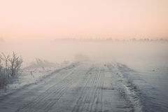 Foggy country fields in winter on cold morning - vintage effect Stock Photos