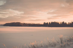Foggy country fields in winter on cold morning - vintage effect Royalty Free Stock Photography
