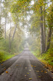 Foggy Country Lane. Stock Photography