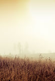 Foggy countryside Royalty Free Stock Photography