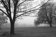 Foggy countryside Royalty Free Stock Photos