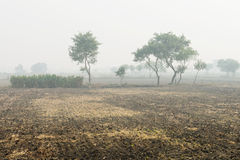 Foggy cultivated plowed fields Royalty Free Stock Photo