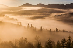 Foggy dawn in the autumn in the mountains Stock Photography
