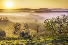 Foggy dawn in italian valley stock photo
