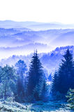 Foggy dawn in mountains Royalty Free Stock Photo