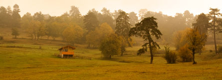 Foggy day. Foggy landscape in the bulgarian fall forest Stock Photo