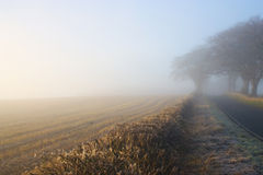 Foggy Day 3. Ploughed field with fog encroached trees stock photography