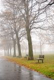 Foggy day. A bench in park during a foggy day in autumn Royalty Free Stock Photo
