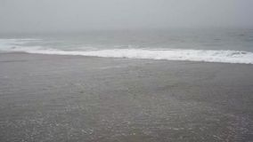 Foggy day at beach stock footage