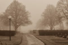 A foggy day Royalty Free Stock Photography