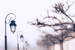 Lanterns and trees in fog France Royalty Free Stock Photo