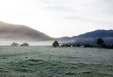 Foggy day at the green grass field in winter with mountain background. A Foggy day at the green grass field in winter with mountain background royalty free stock photo